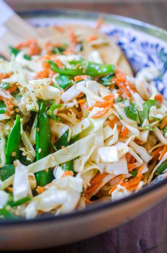 Asian Cabbage Salad Life S Ambrosia