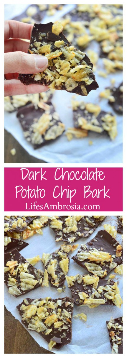 This Dark Chocolate Potato Chip bark requires just two ingredients and 20 minute to get you to salty, sweet snacking heaven.
