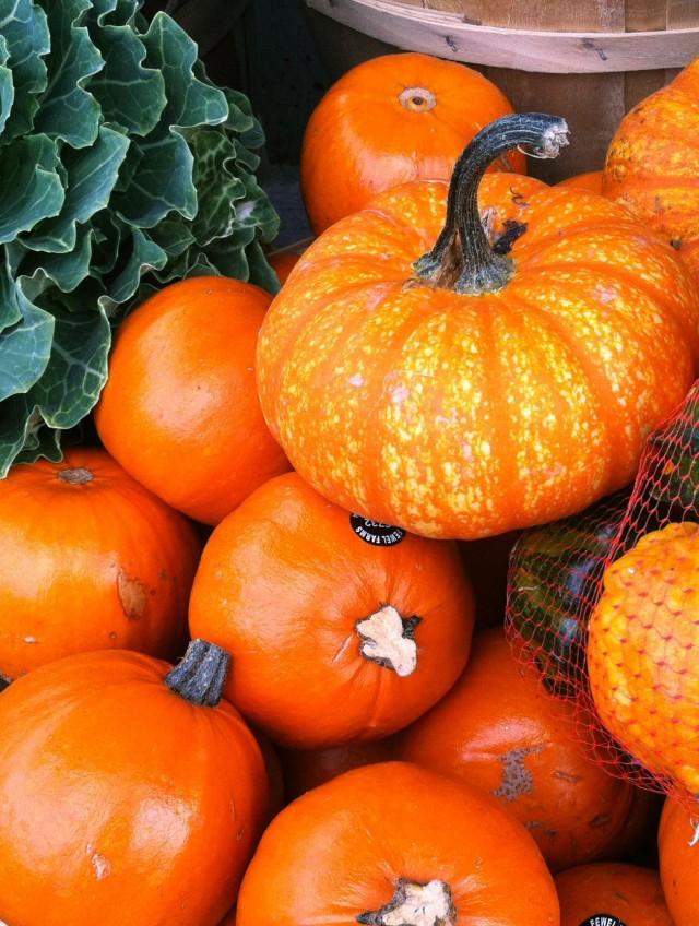 Sunday Shares: The Pumpkin Edition