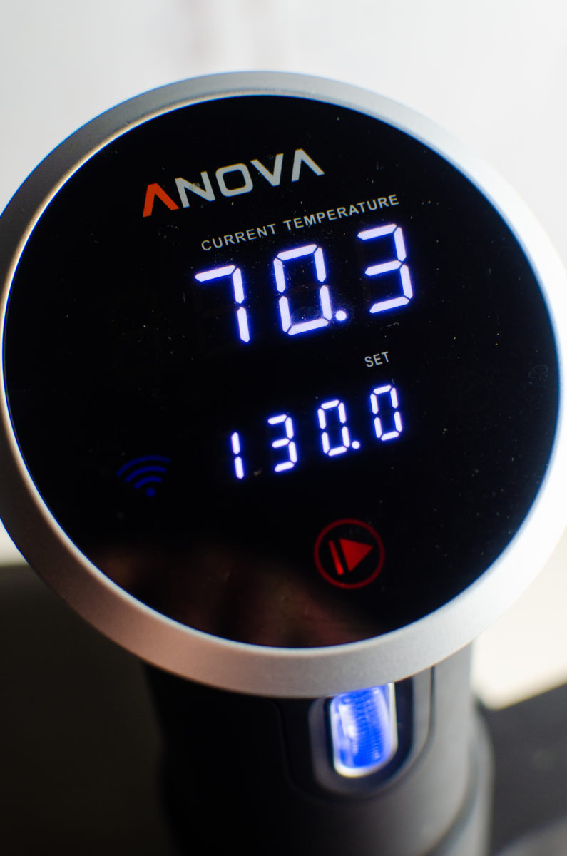 Anova Sous Vide Circulator