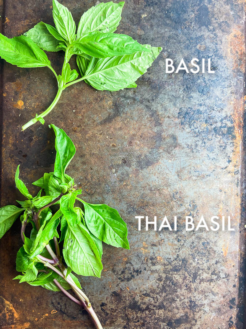 Photo of Sweet Basil and Thai Basil