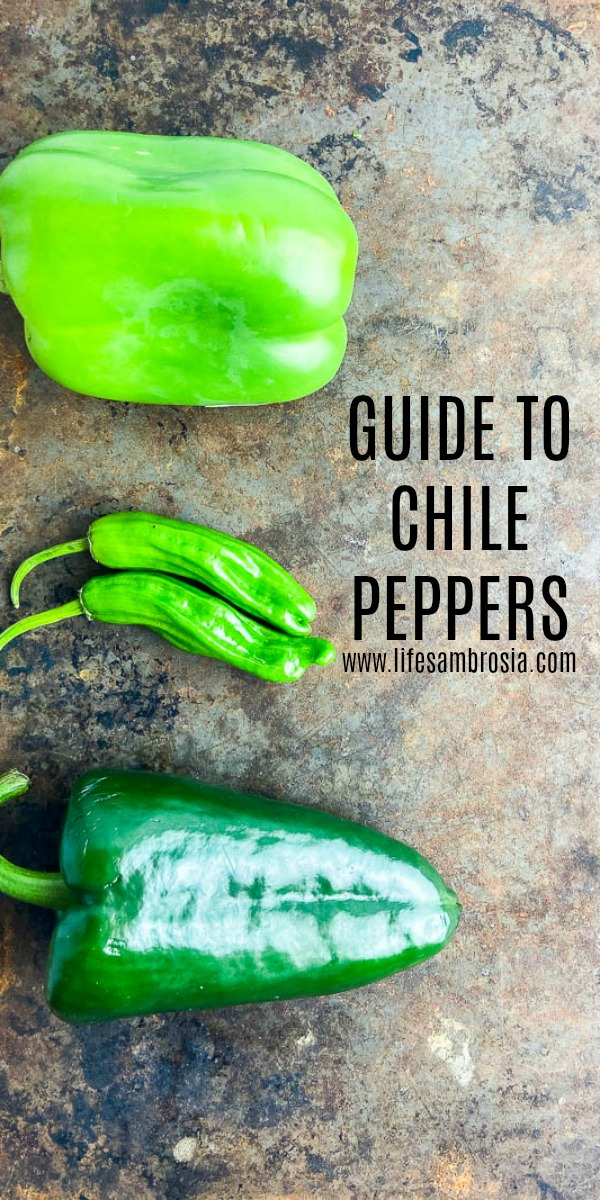 A must have Guide to Chile Peppers! Learn how to identify them and find them on the socville scale.