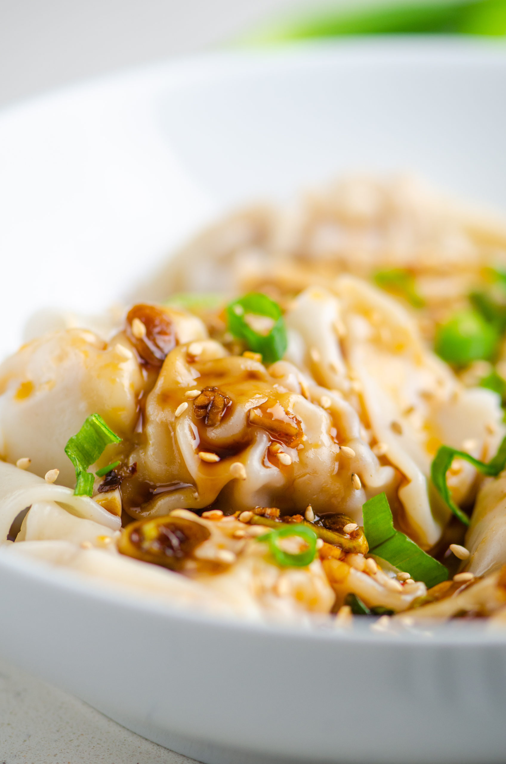 Close up photo of shrimp and pork wontons with sauce and green onions.